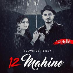 12 Mahine cover mp3