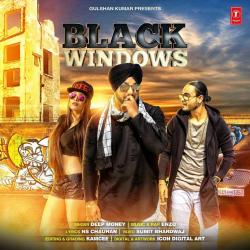 Black Windows cover mp3