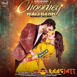 Choorhey Wali Bahh cover mp3