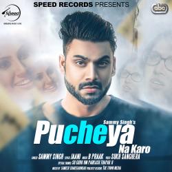 Pucheya Na Karo cover mp3