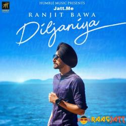 Diljaniya cover mp3