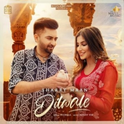 Dilwale cover mp3