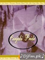 Punjabi Pride - Various