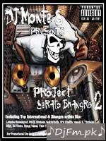 Project Serato Bhangra 2 - DJ Monte-S