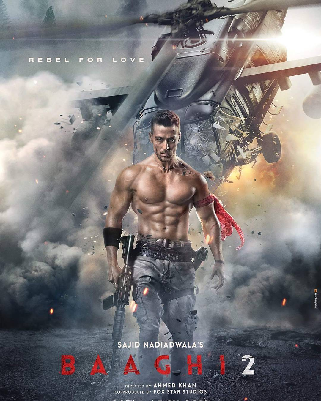 Baaghi 2 - Various Artists